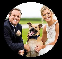Wedding Pet Photos