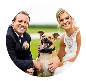 Pet-wedding-photos