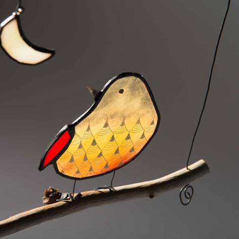 oiseau lune