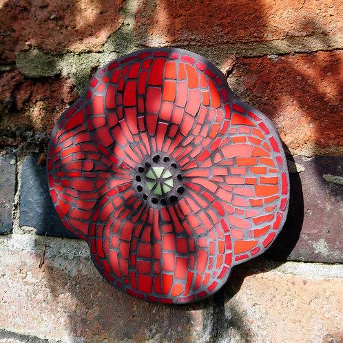 Outdoor Poppy Mosaic