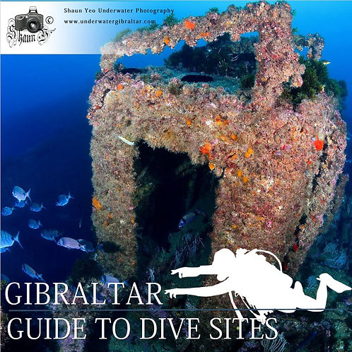 Gibraltar - Guide to Dive Sites