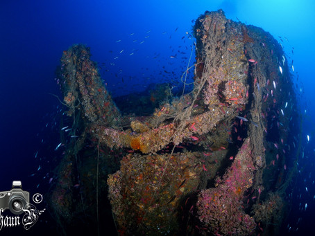 Wreck Diving in Cabo de Palos
