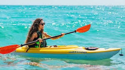 Single Kayak ( hourly rental)