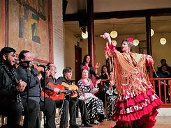 brochure flamenco 2.jpg