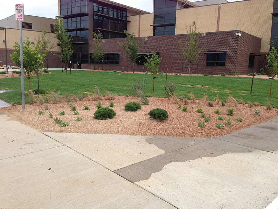New Alternative School-Fountain, CO
