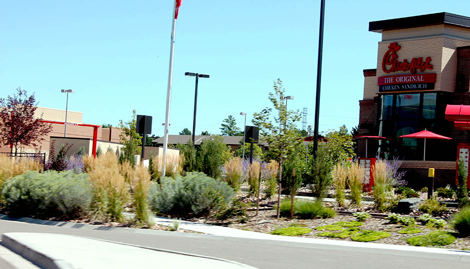CFA-Tamarac Square Denver-2.jpg