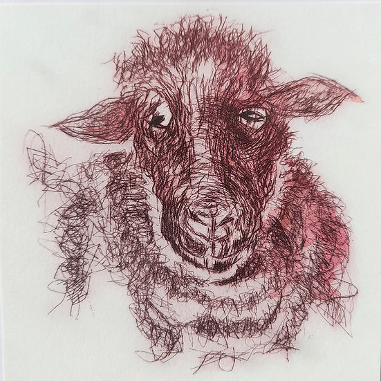 'Mrs Sheep' (Pink) Digital Print
