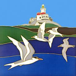 5 Ltd Ed signed giclee print Terns at th