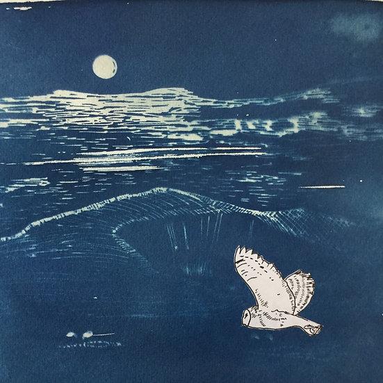 'Night Owl' Original Painting