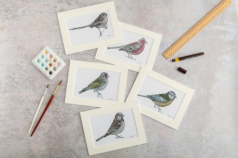 Garden Birds: A Selection of 5 Patterned and Coloured Prints