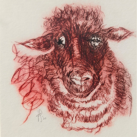 'Mrs Black-Eyed Sheep' Print