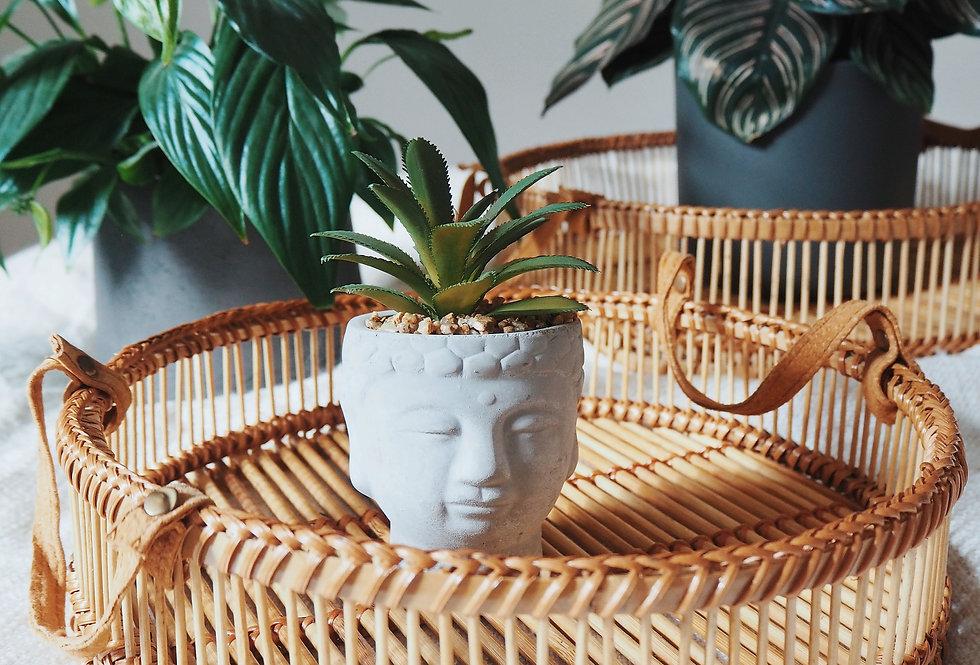 Buddha Succulent Plant Pot