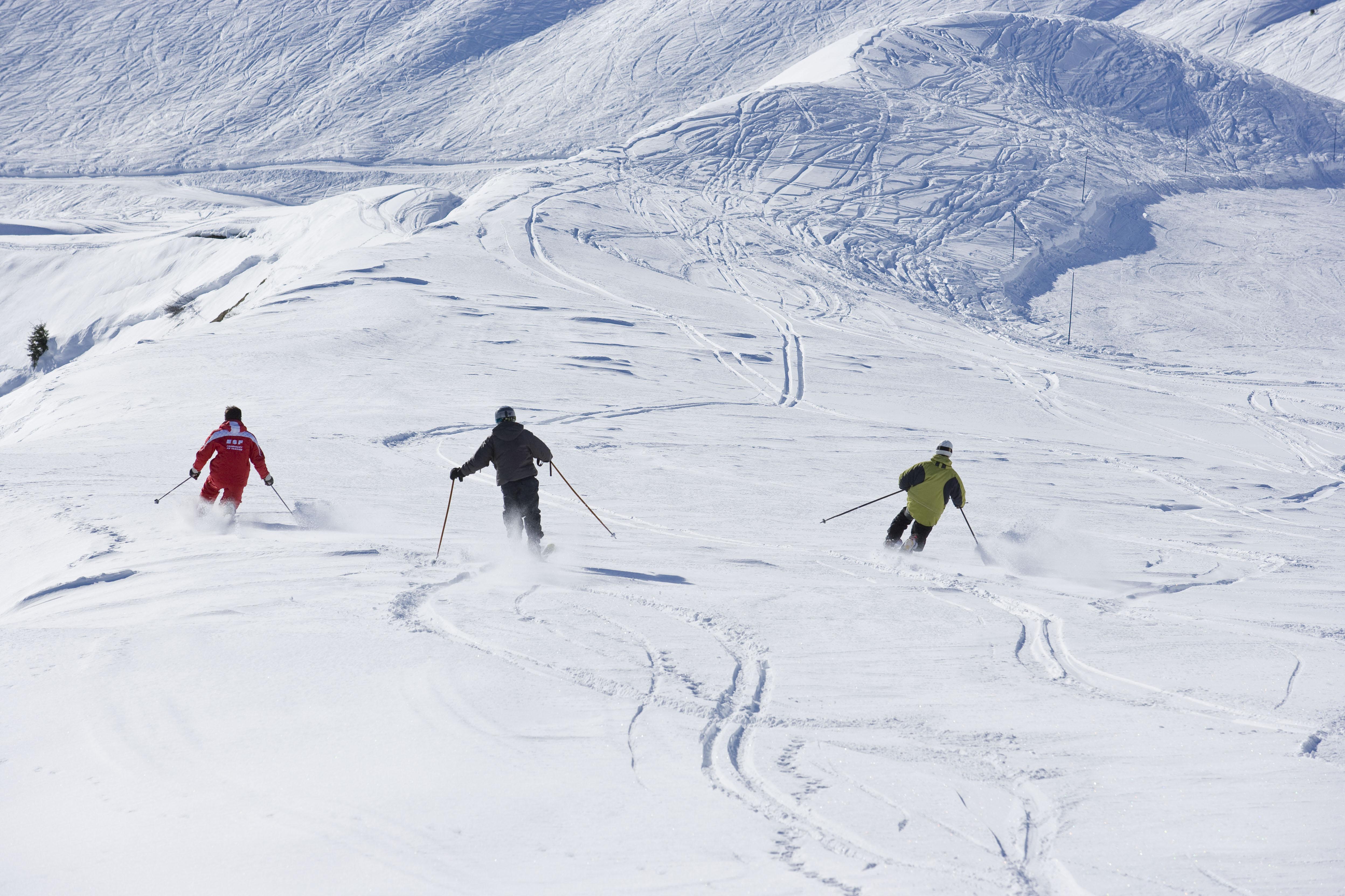 Telemark skijanje