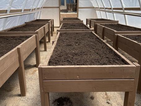 St. John's Garden Ministry: Tending the Soil, Tending the Soul