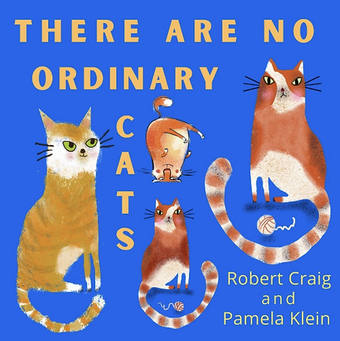 OrdinaryCat2.png