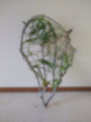 willow tree basket.jpg