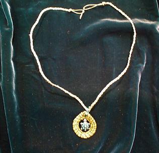 jeweled turtle.jpg