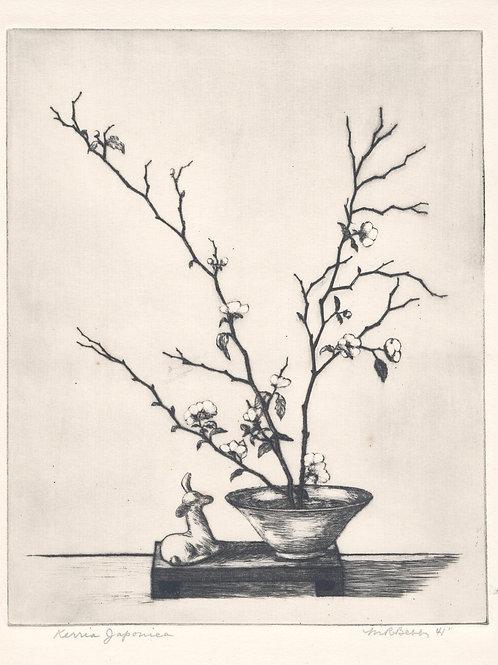 Kerria Japonica 1941