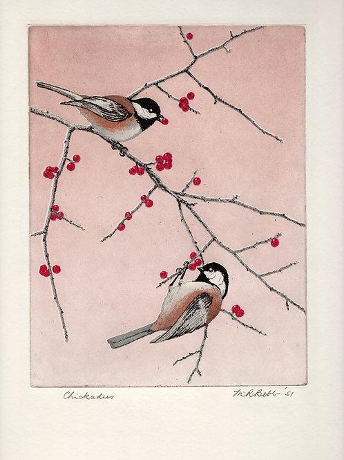 Chickadees 1951