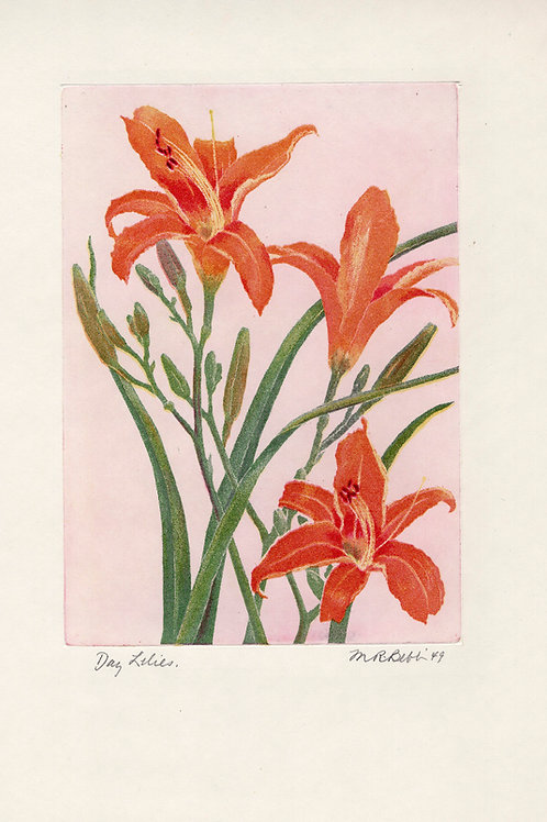 Day Lilies 1949