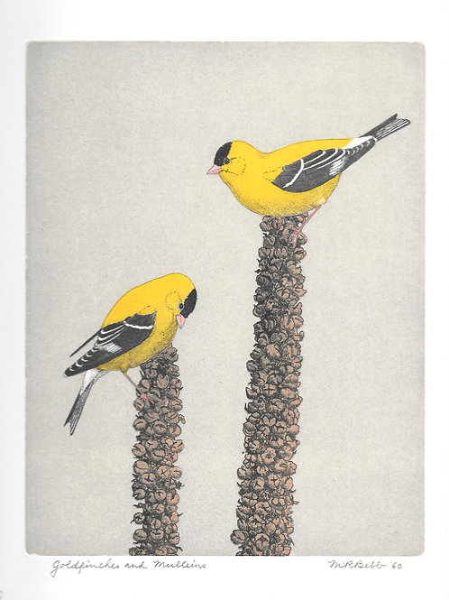 Goldfinches and Mulleins 1960