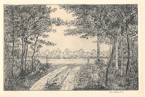 Untitled (Road with Trees)