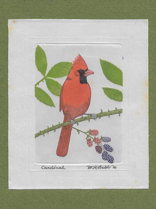 Cardinal (small) 1970
