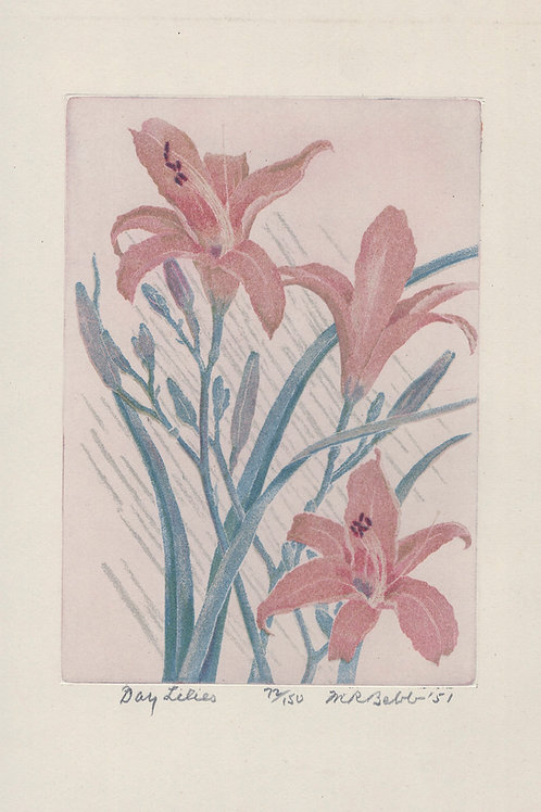 Day Lilies 1951