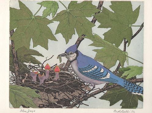 Blue Jays 1952