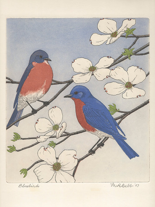 Bluebirds 1957