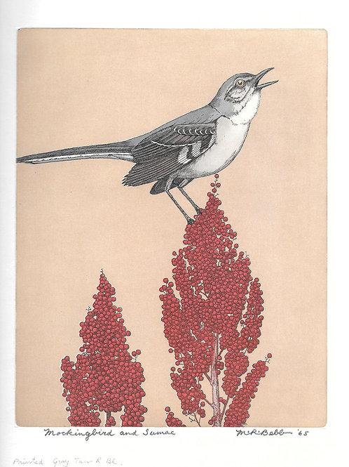 Mockingbird and Sumac 1965