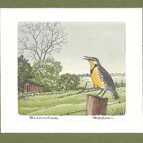 Meadowlark (no date)