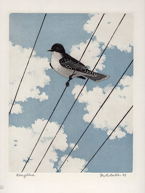 Kingbird 1959