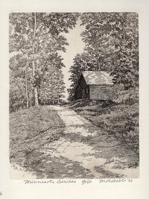 Minnesota Birches 1960