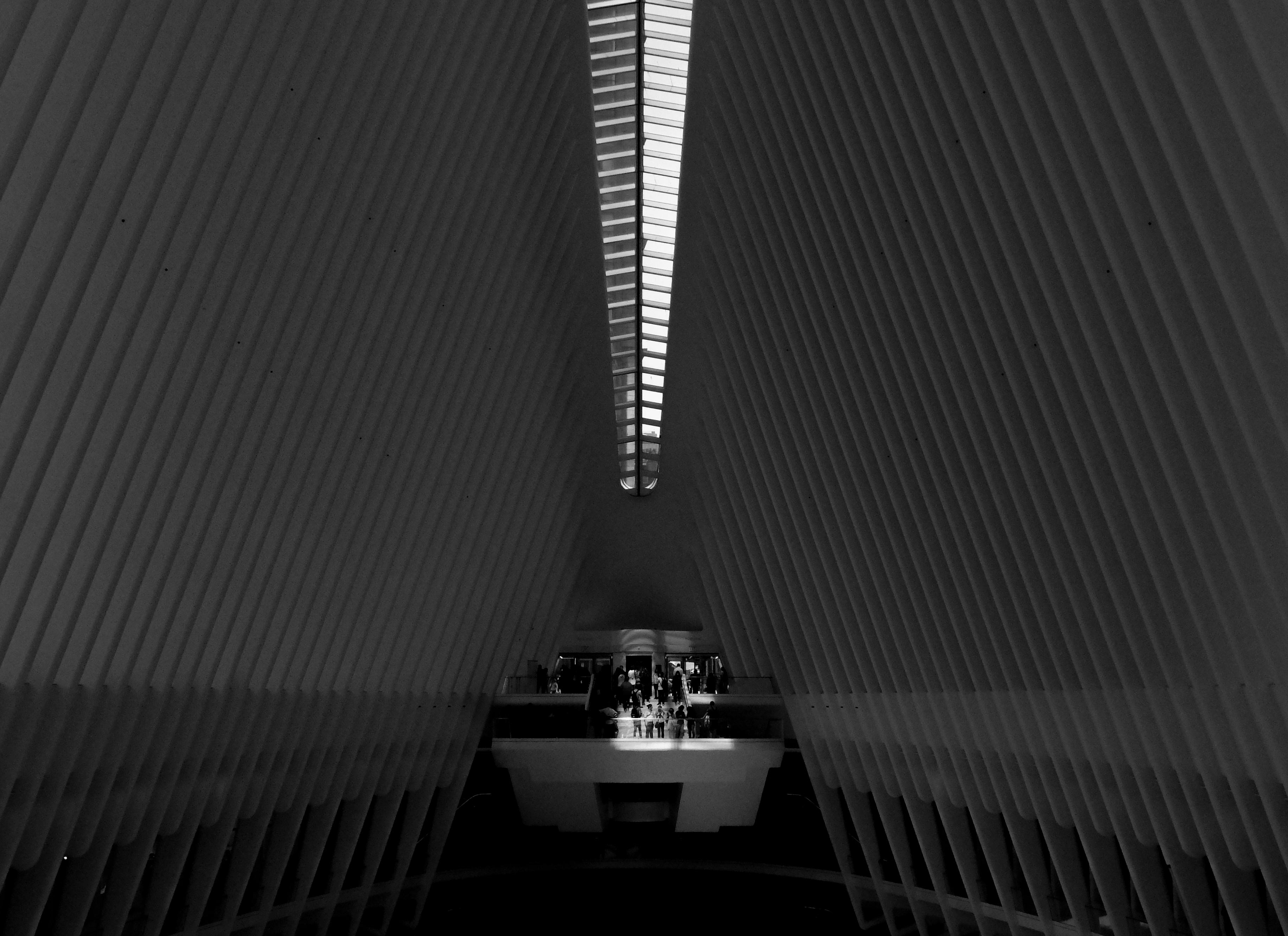 In un'opera di Calatrava