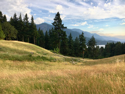 Columbia River Gorge views