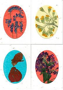 Card designs CfE01052020.jpg