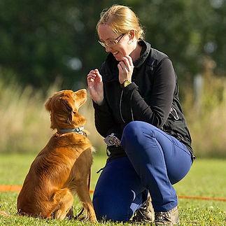 Heidi E. Hundetræning Amager. Hundetræning Køge, Hvlpetræning Amager, Hvalpetræning Køge