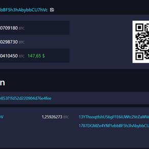 Bitcoin ist anonym? Pseudonymität erklärt via Blockchain-Explorer