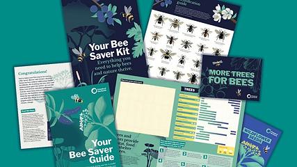 Bee Savers Kit.webp