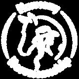 Harmony-Horsemanship-Full-Logo-RGB-White