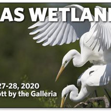 February 2020: Texas Wetlands Conference
