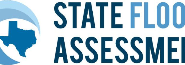 January 2019: Texas State Flood Assessment