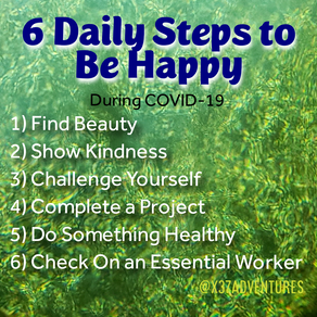6 Daily Steps - Where did they come from?