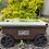 Thumbnail: Lawn Buddy Cart
