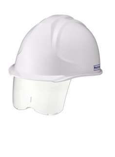Helmet Protection w_ visor (1).png
