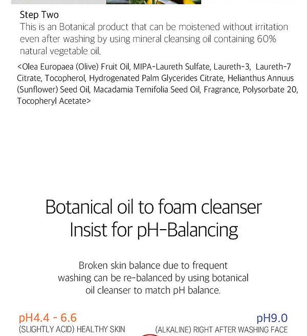 A138 Botanical Oil to foam cleanser (7).