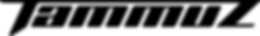 TAMMUZ_Logo 2019.png