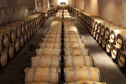 photo viticulteur bordeaux.jpg