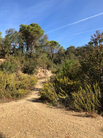 Girona Hikes